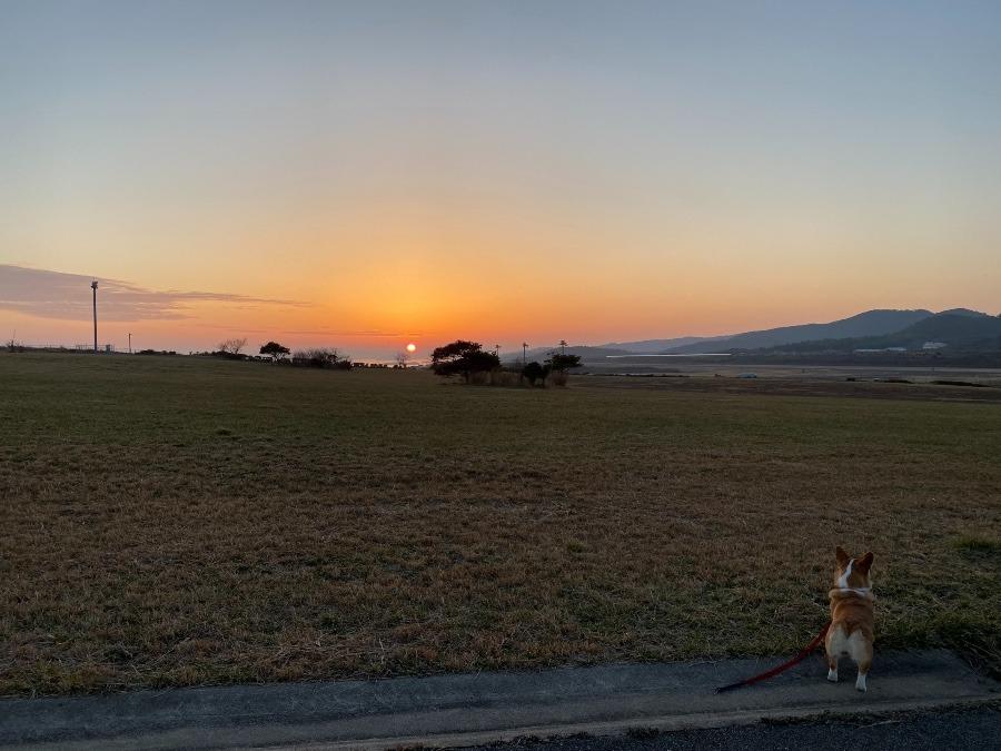 空港公園の夕陽